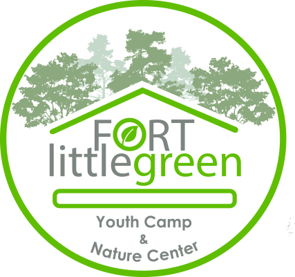 Fort Little Green |Summer Camp for Kids | before/after school day camp